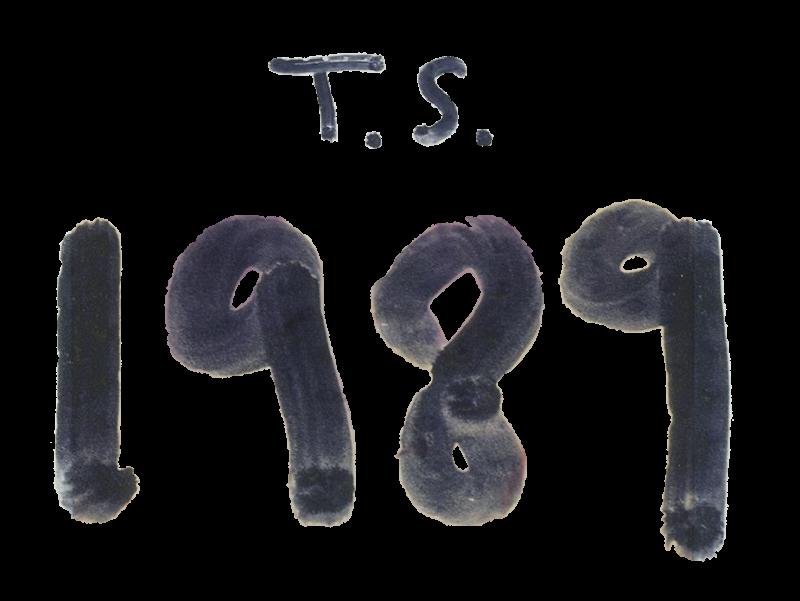 1989_album_logo