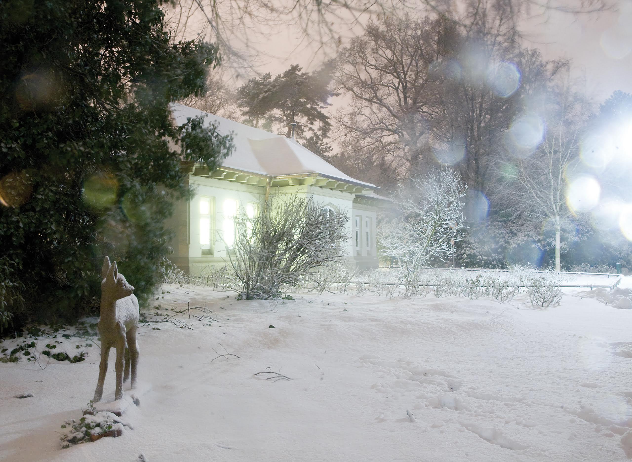 Weiße Weihnachten? | FURIOS Online