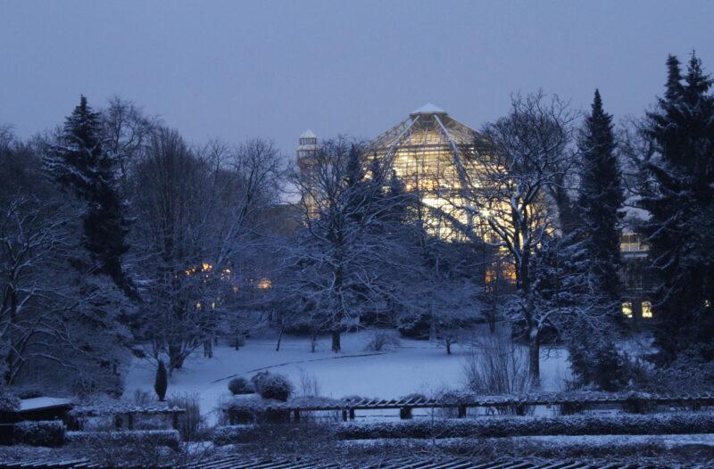 Alles andere als friedlich verliefen Haushaltsgespräche für den Botanischen Garten. Foto: © I. Haas, Botanischer Garten und Botanisches Museum Berlin